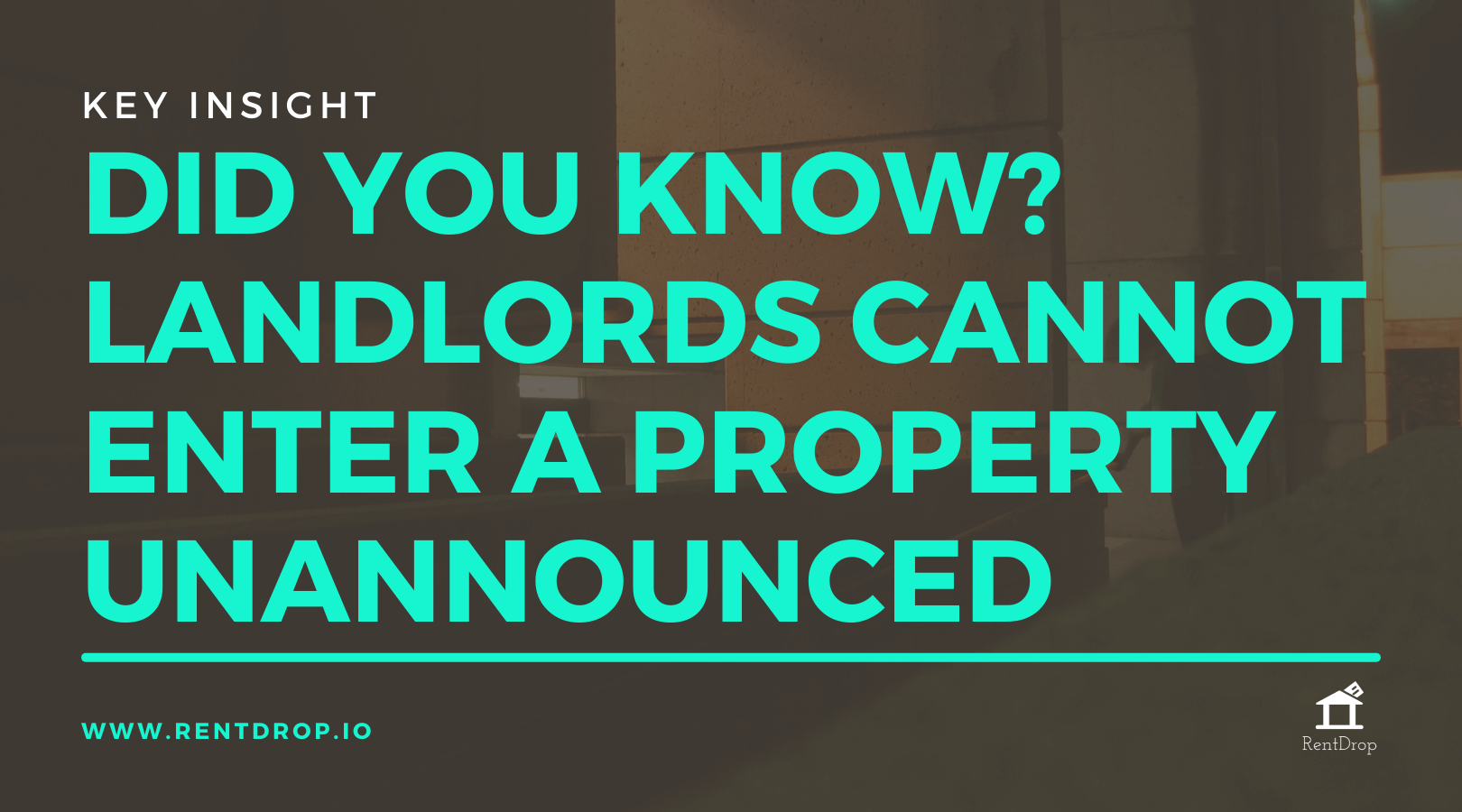what a landlord cannot do rentdrop insight